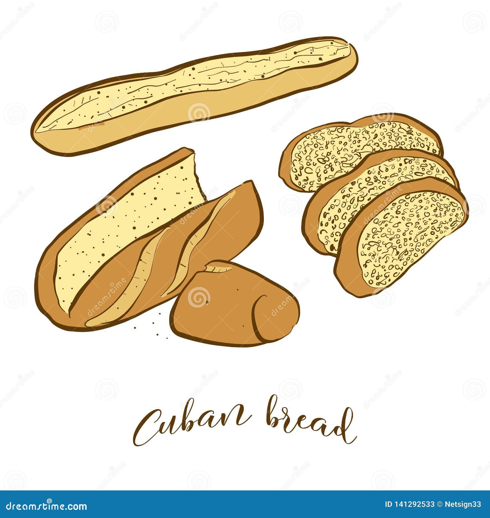 Croquis colorés de pain cubain de pain