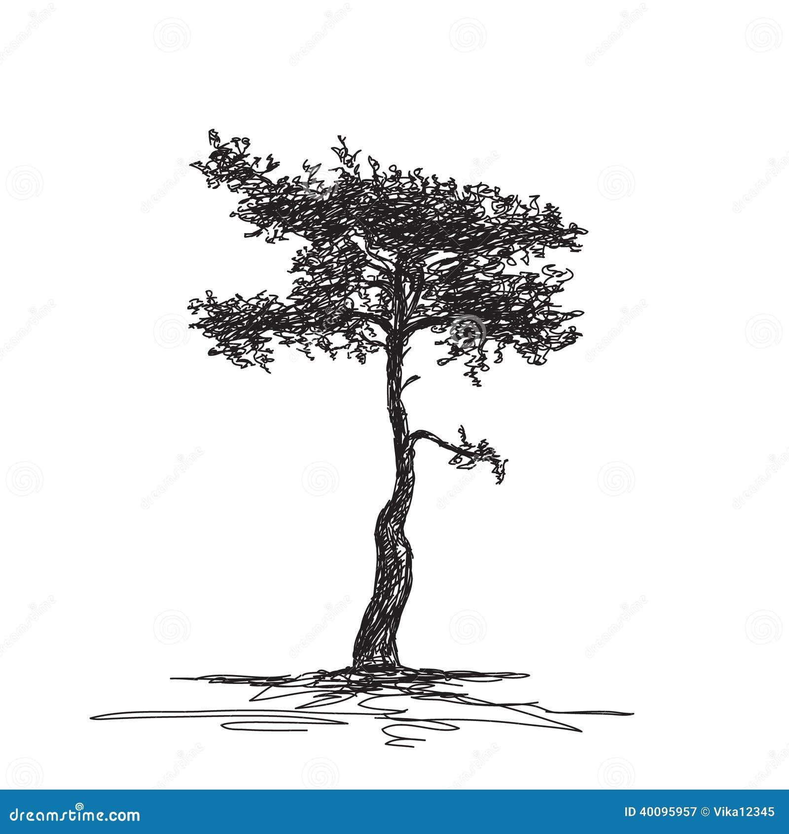 Croquis d 39 arbre d 39 isolement illustration de vecteur - Croquis arbre ...