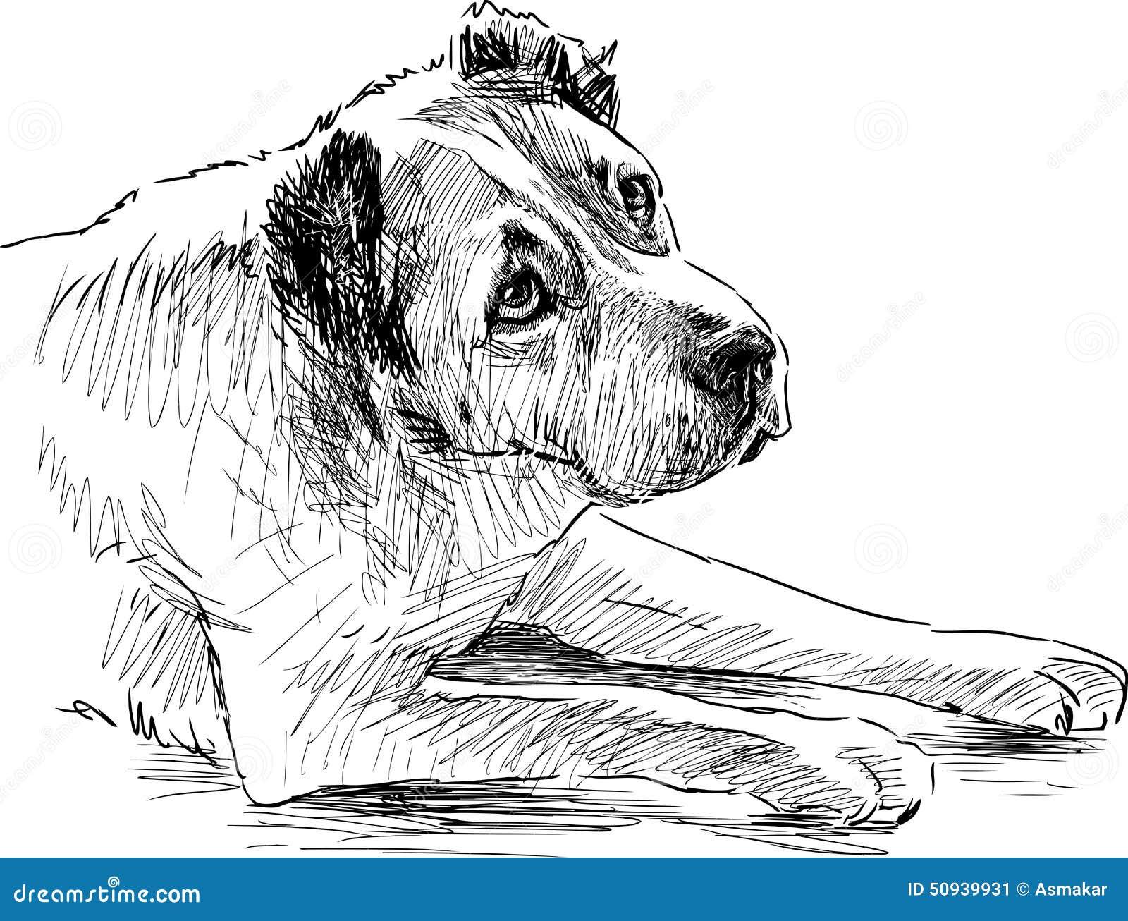 Croquis d 39 un chien triste illustration de vecteur image 50939931 - Dessins triste ...