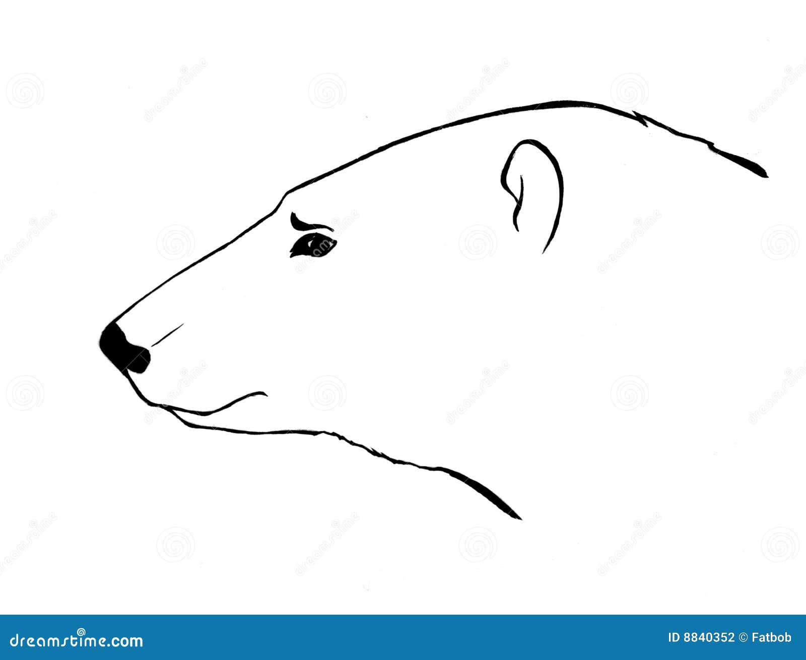 Croquis de t te d 39 ours photographie stock image 8840352 - Dessin d un ours ...