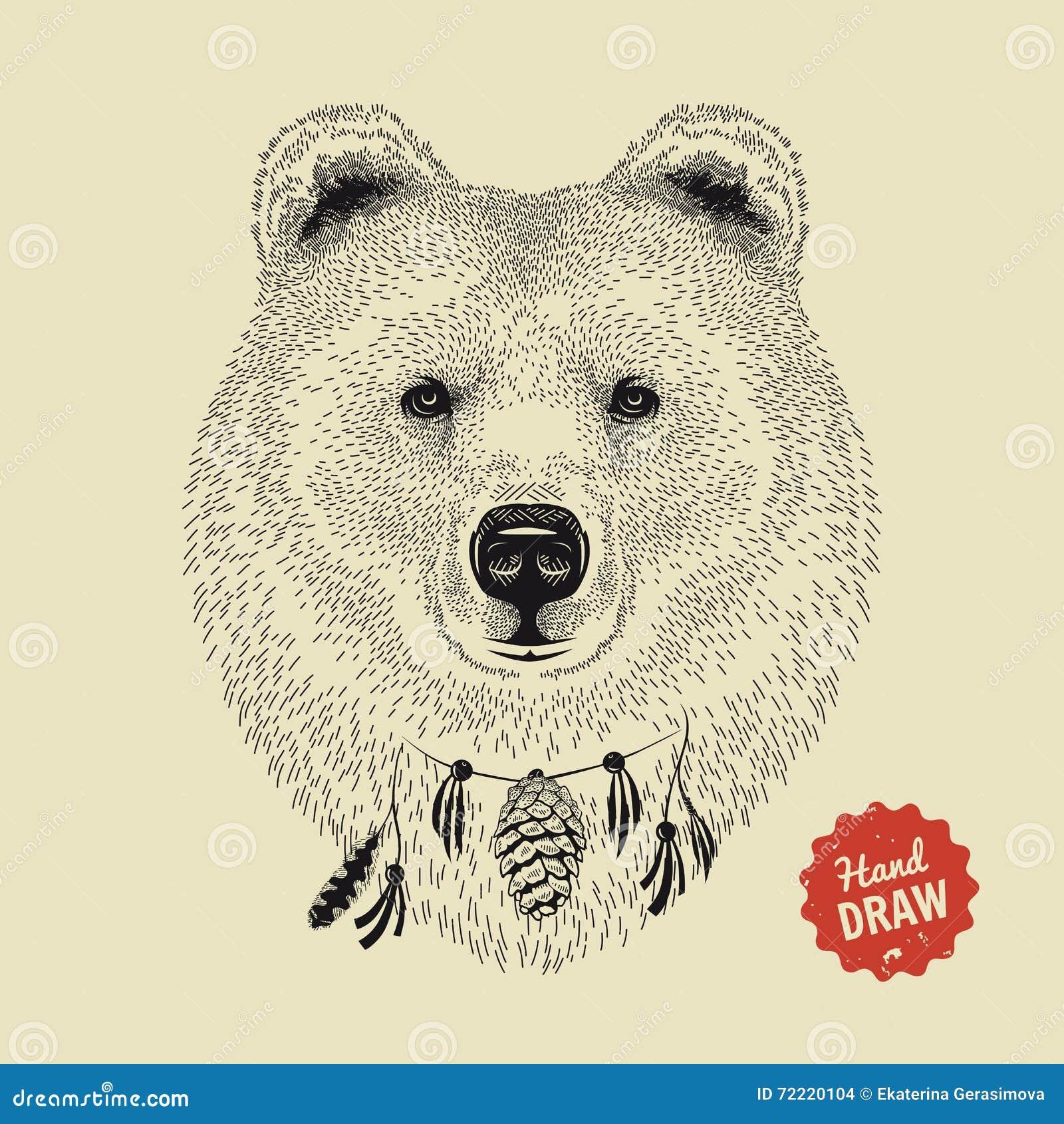 croquis de vecteur d 39 un visage d 39 ours t te d 39 ours vue de face illustration de vecteur. Black Bedroom Furniture Sets. Home Design Ideas