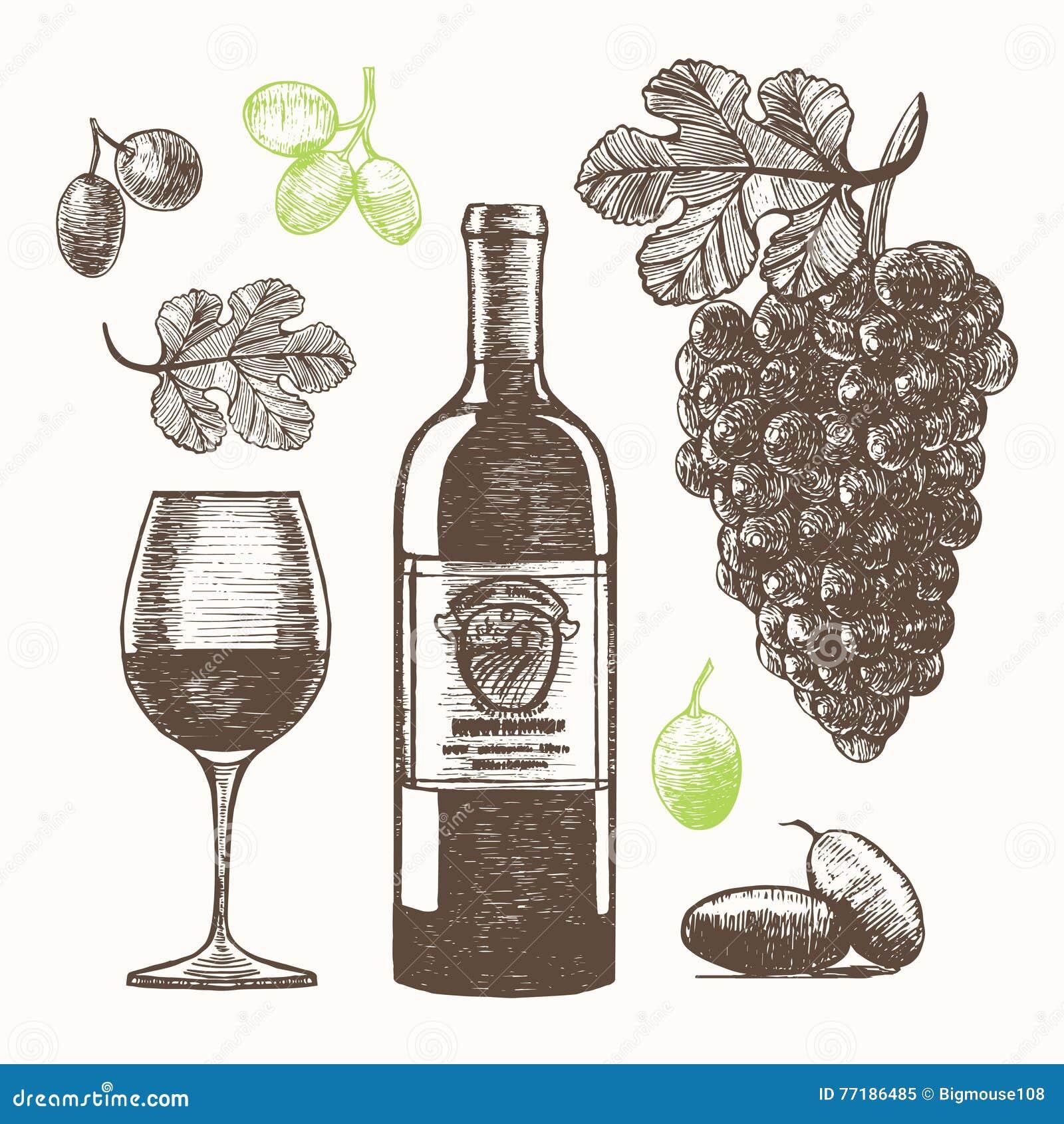Croquis réglé d aspiration de main de vin Vecteur