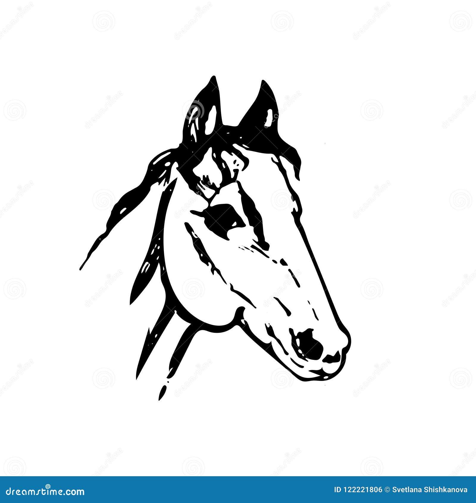 Croquis tir par la main de t te de cheval dessin au trait - Dessin cheval de trait ...