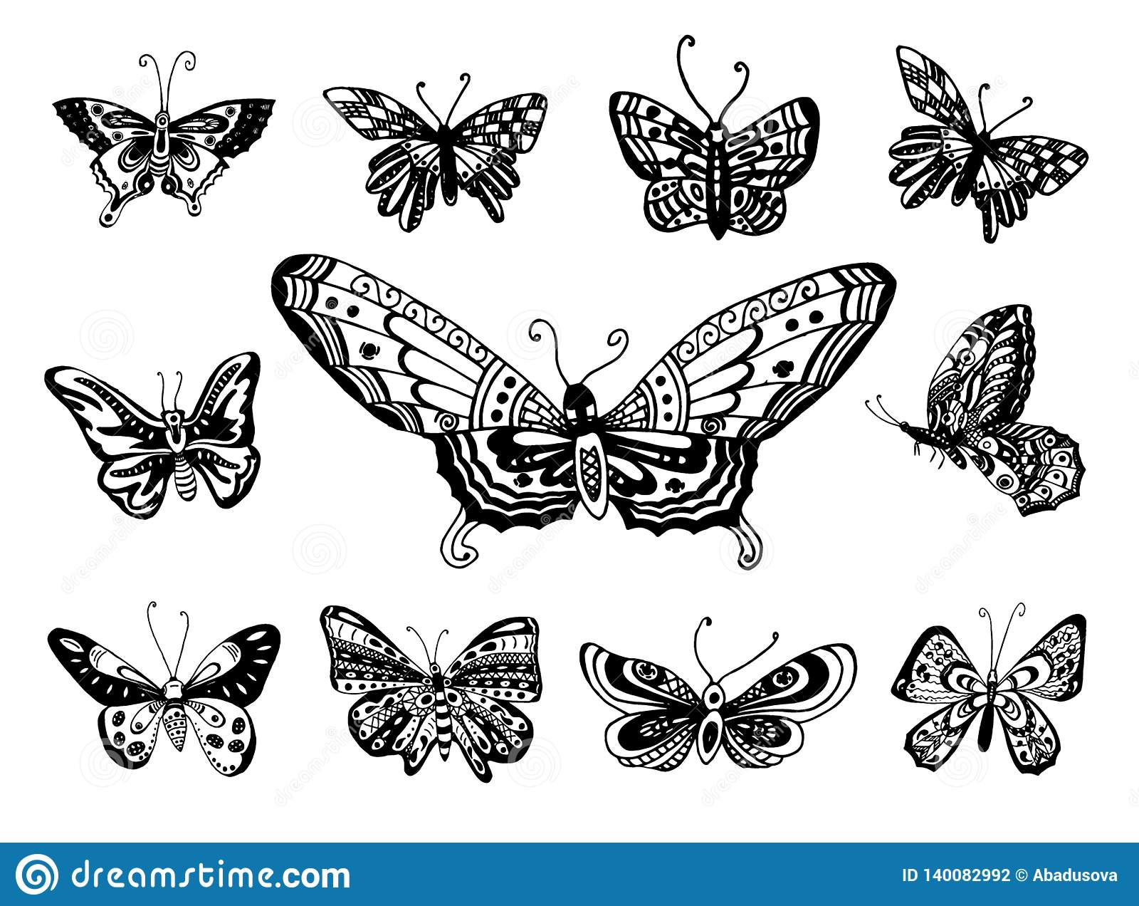 Croquis tiré par la main de vecteur d illustration de papillon sur le fond blanc