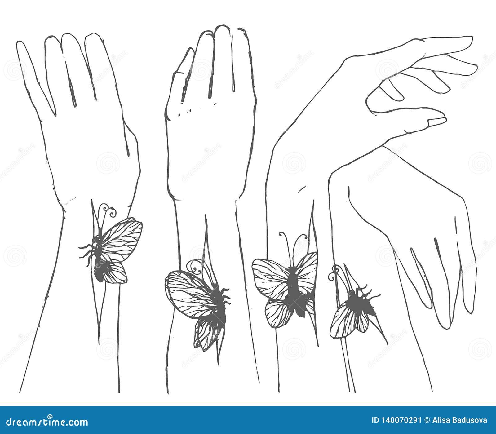 Croquis tiré par la main de vecteur des mains avec l illustration de papillon