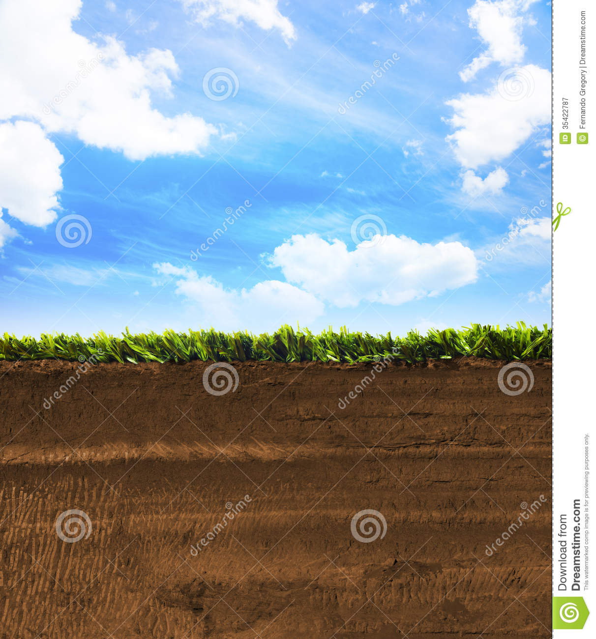 Cross Section Of Grass With Blue Sky Stock Image