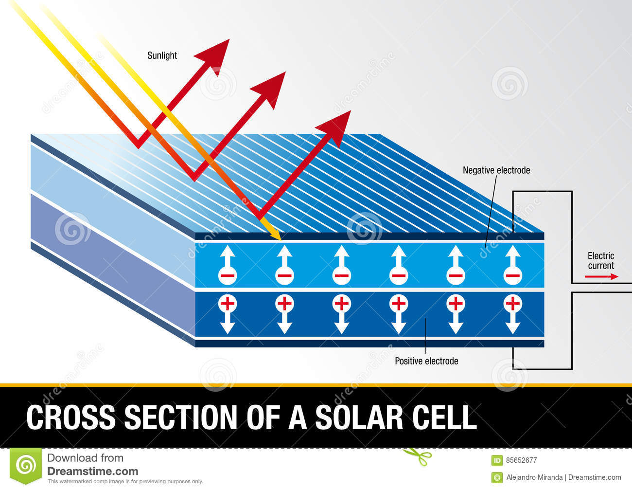 Cross Section Of A Solar Cell Renewable Energy Stock