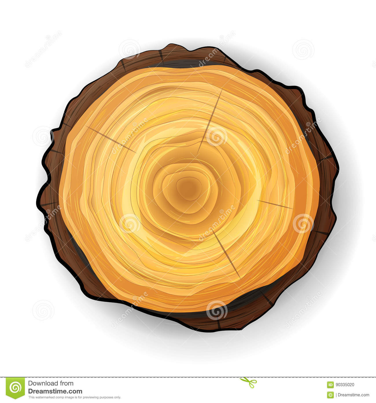 Cross Section Tree Wooden Stump Vector. Tree Round Cut With Annual Rings