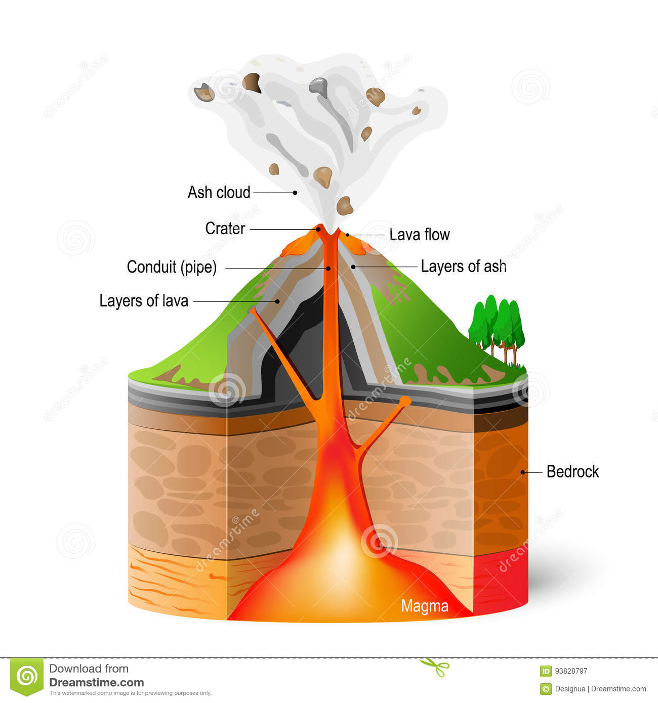 Cross section of volcano stock vector illustration of layer 93828797 cross section of volcano ccuart Image collections