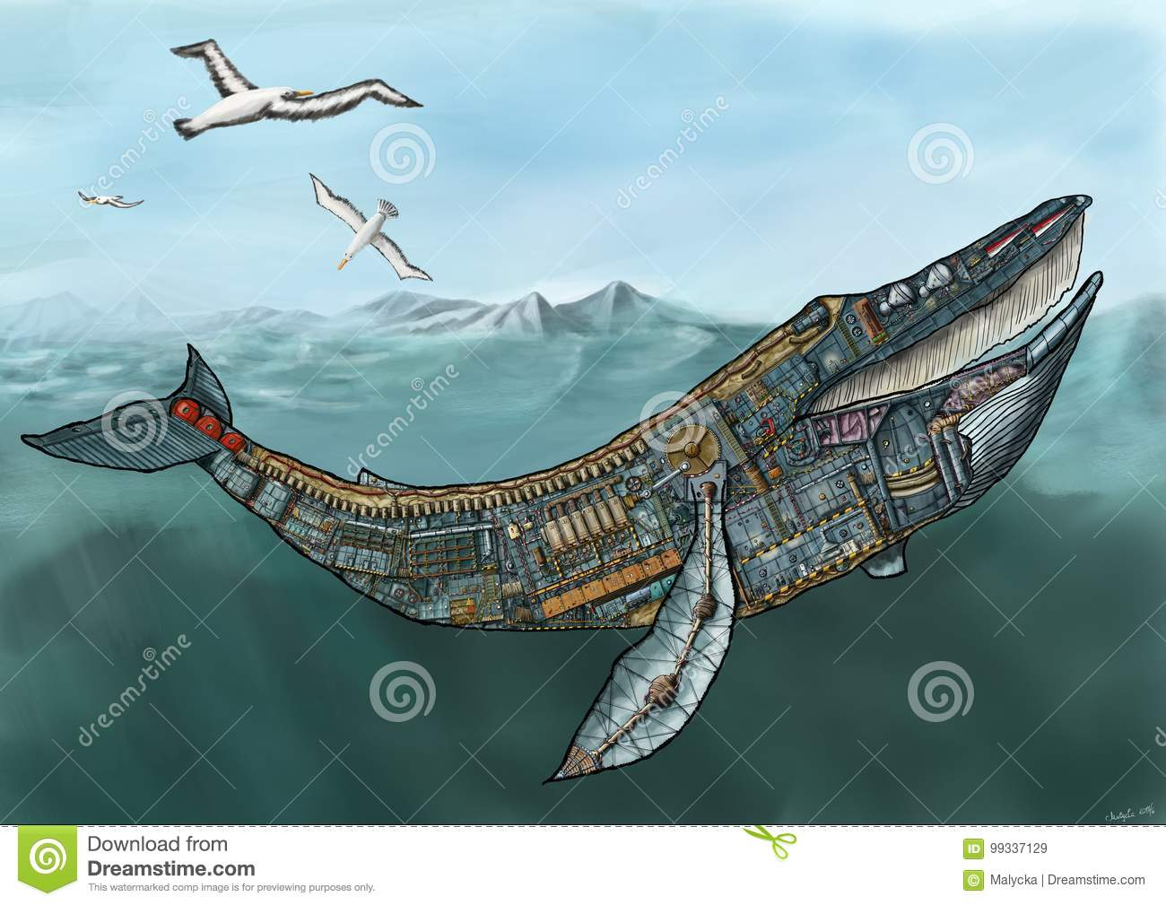 Cross section of the whale stock illustration. Illustration of ...