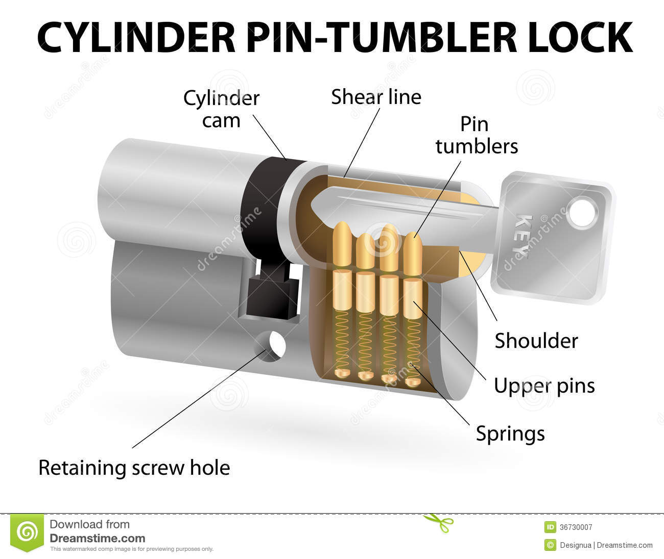 The Cross Sectional View Of The Pin Cylinder Lock Royalty