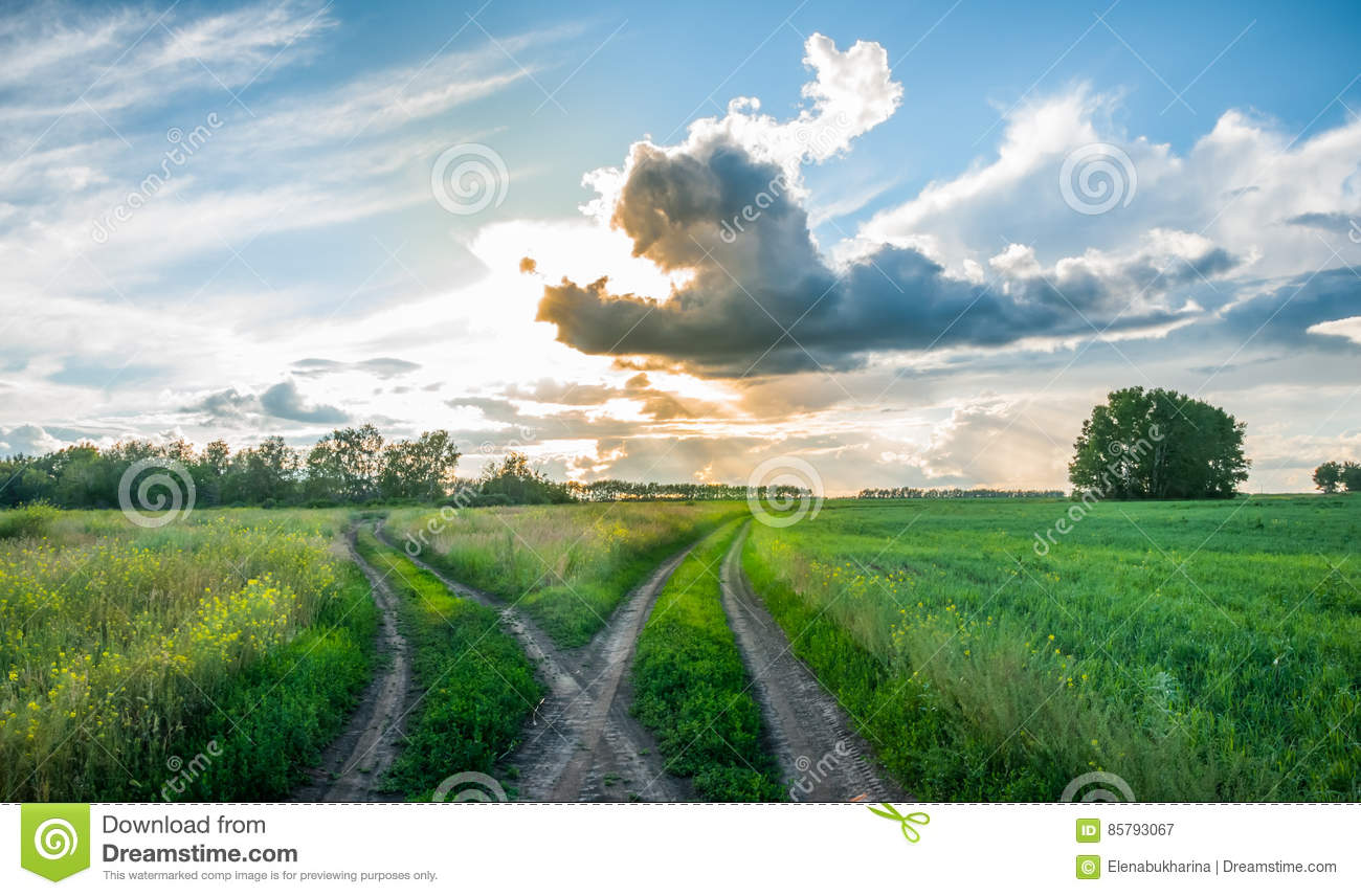 Crossroads in the field at sunset. Split country road. Beautiful clouds. Rural landscape