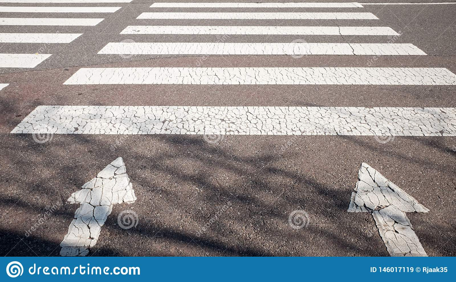 A crosswalk with a warm sunshine.