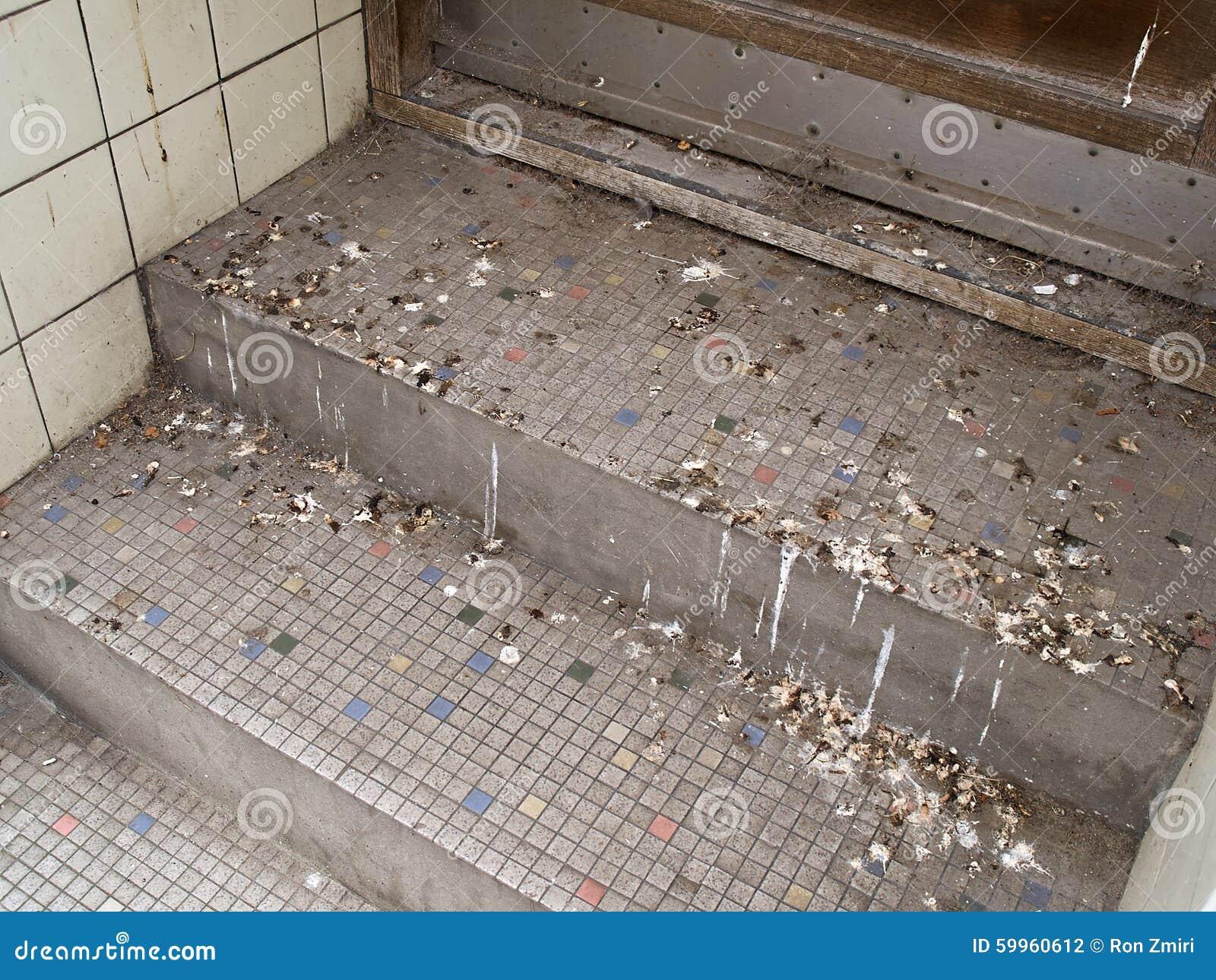crottes de pigeon dans la ville photo stock image 59960612. Black Bedroom Furniture Sets. Home Design Ideas