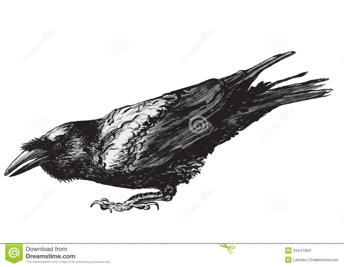 vectorized drawing of a crouching raven with it's beak open.