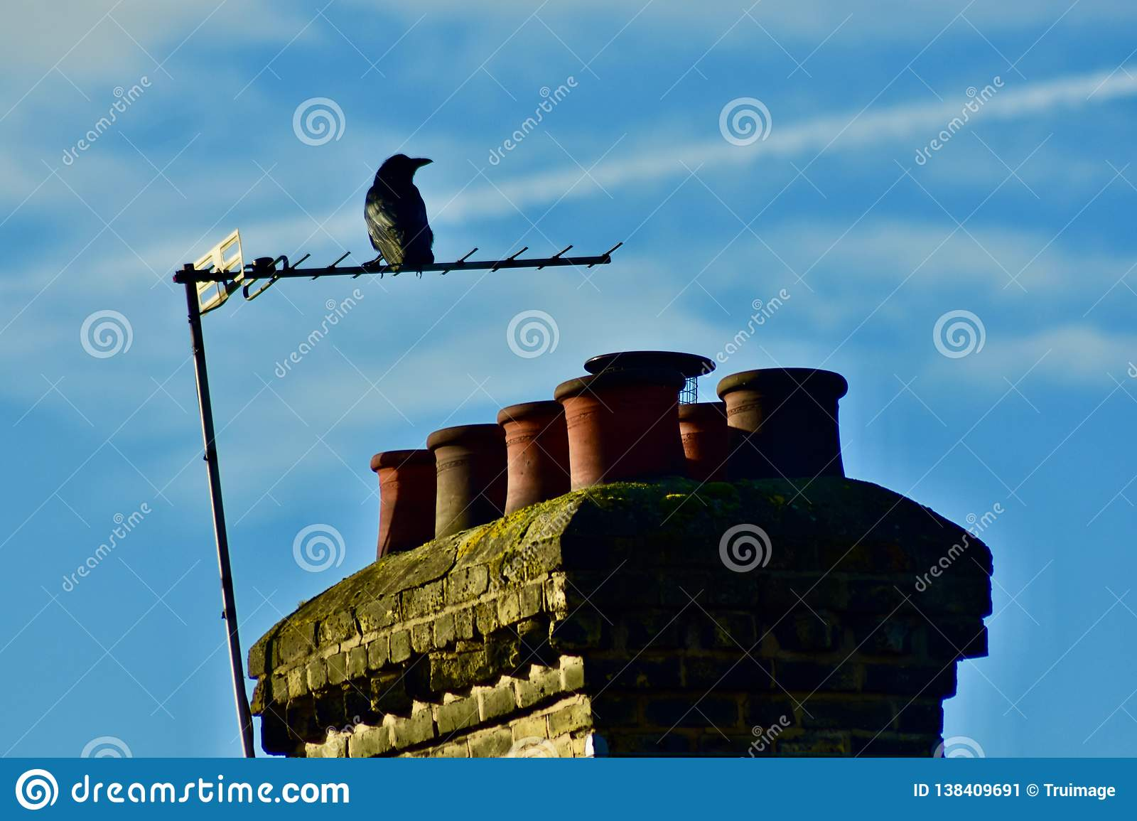 A Crow On An External TV Antenna Stock Image - Image of