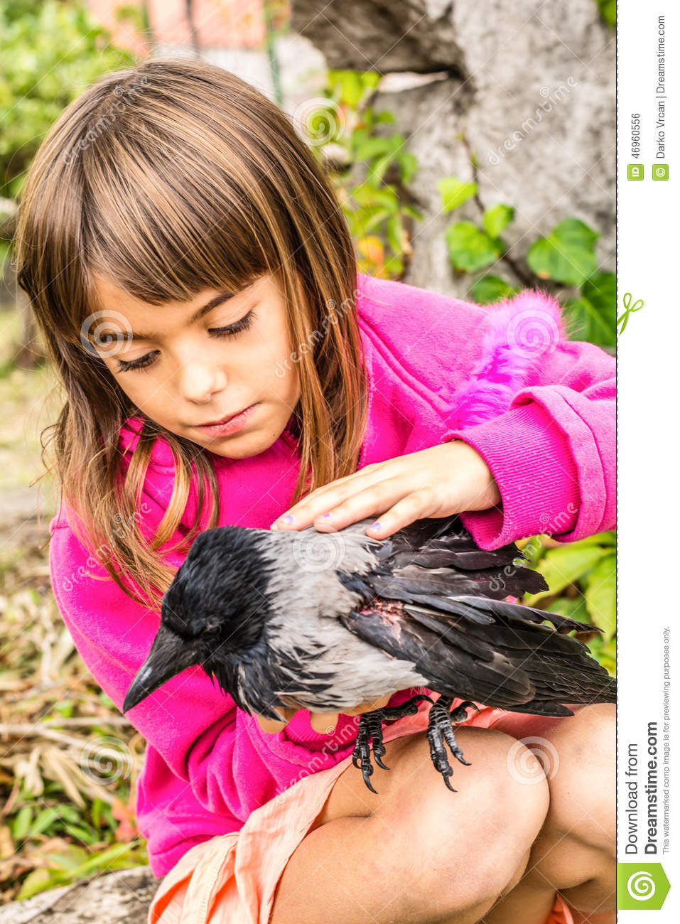 crow and a little girl stock photo image 46960556