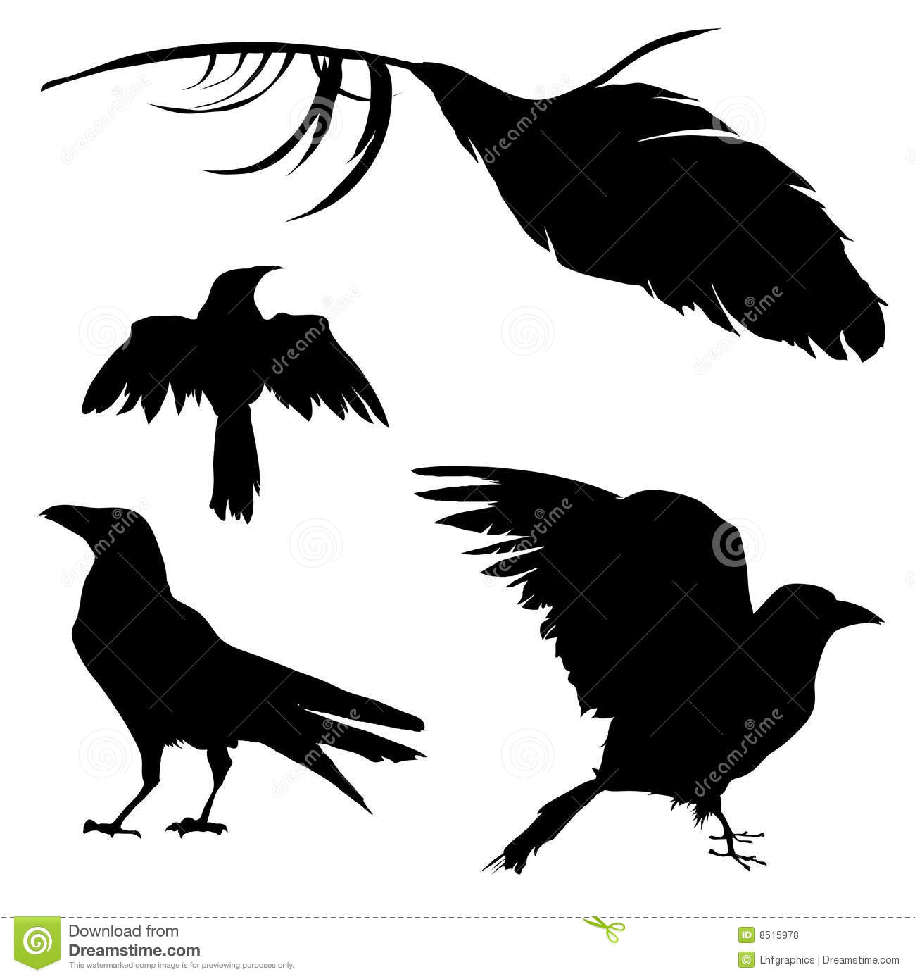 Crow, Raven, Bird, And Feather Royalty Free Stock Photos - Image ...
