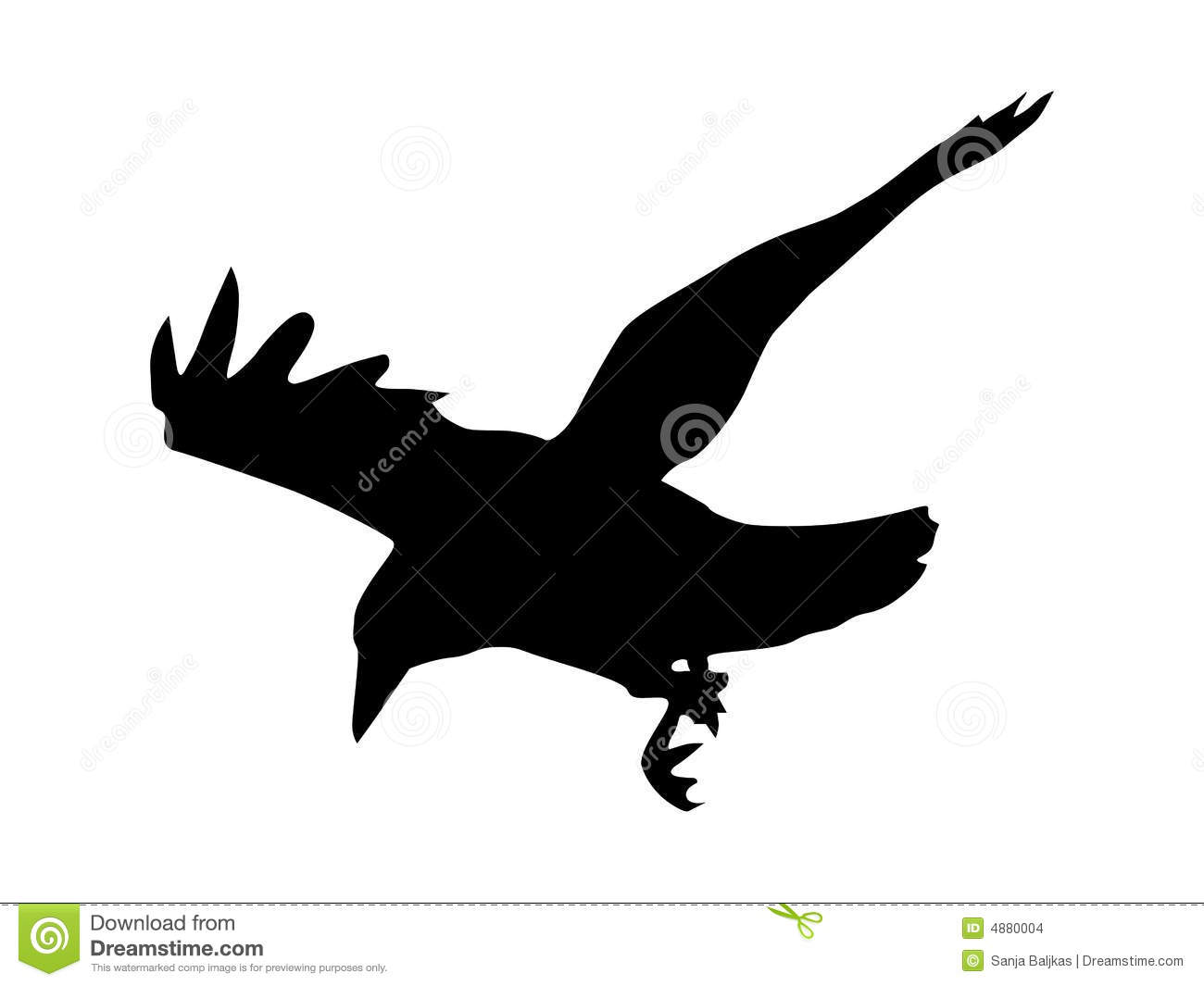 silhouette of black crow over white background.