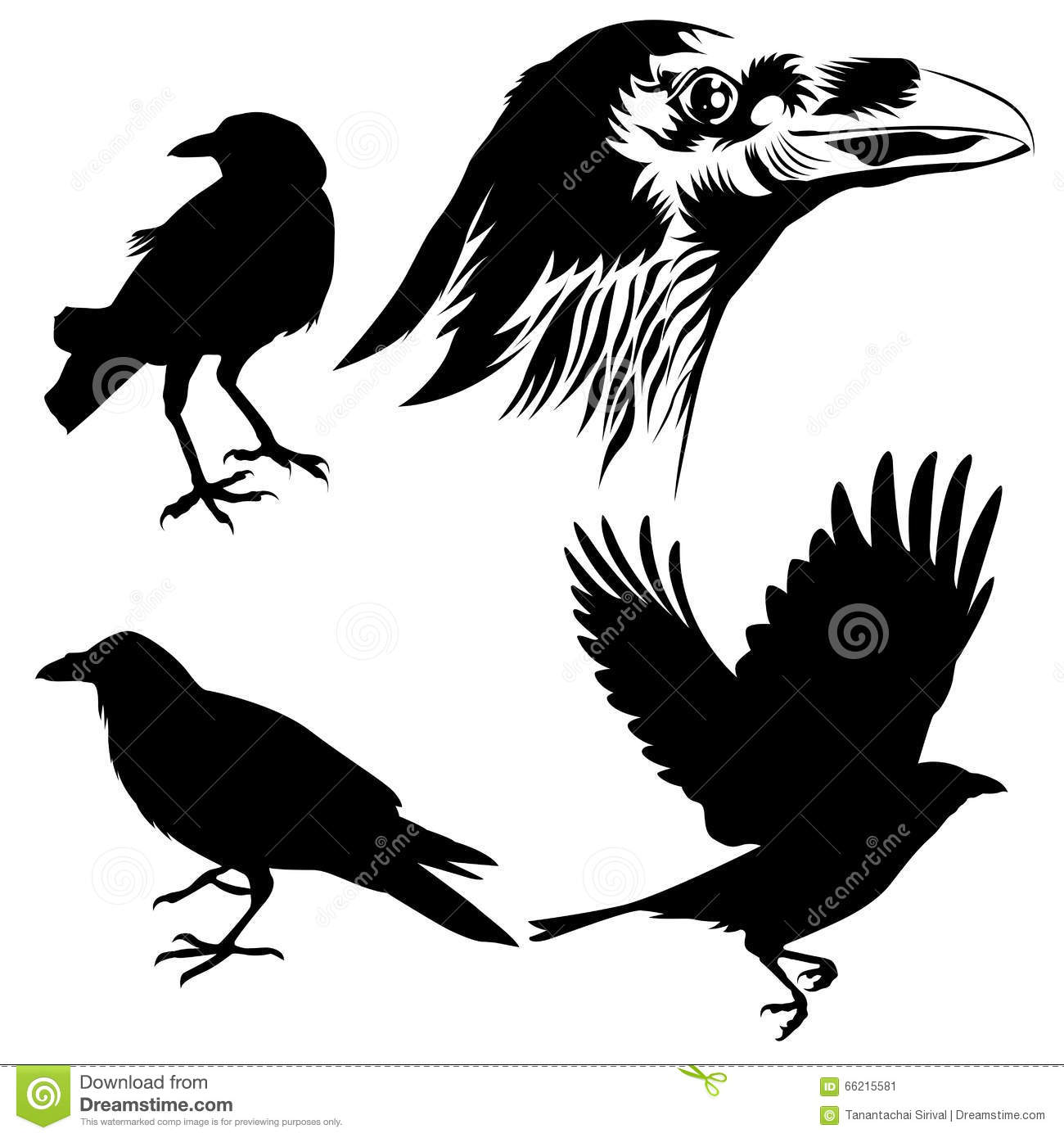 Crow Silhouette Stock Vector - Image: 66215581