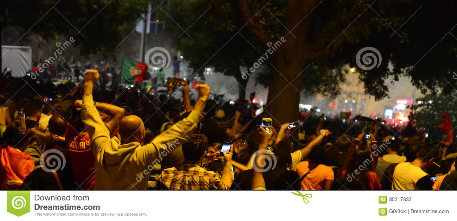 Crowd Celebrating Victory, Portugal Flag, Lisbon - UEFA European Soccer Championship Final