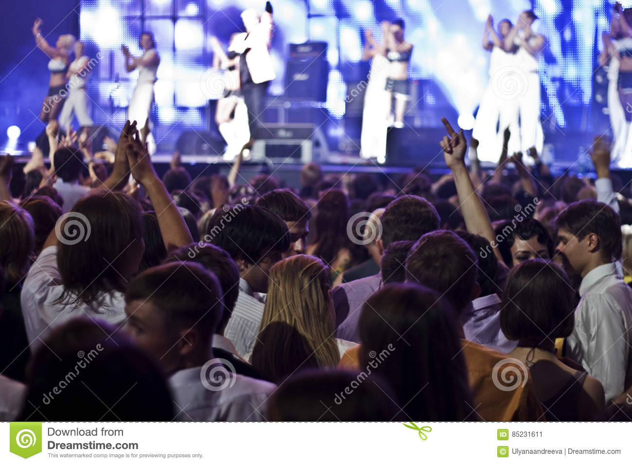 A crowd at the concert