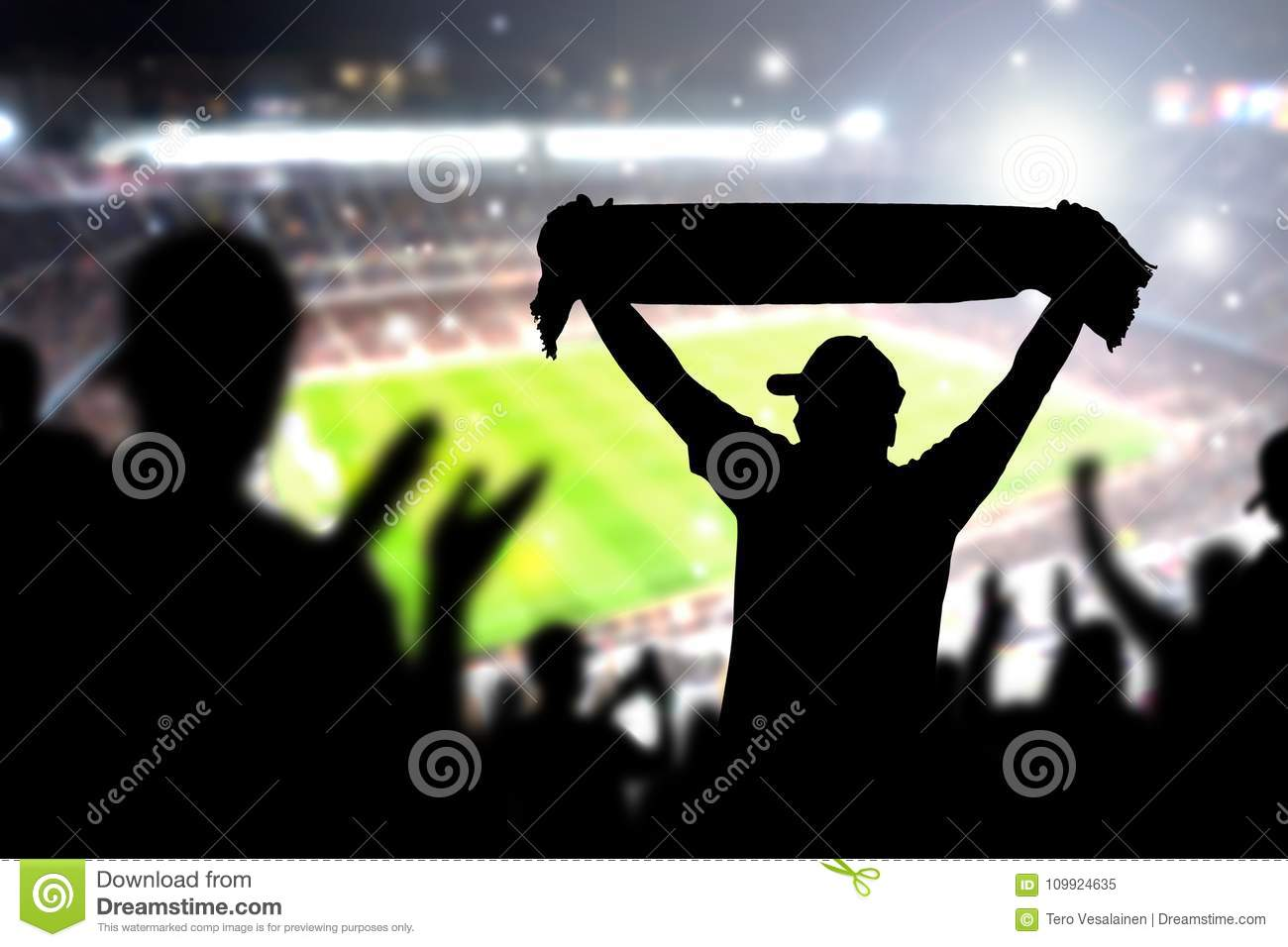 Crowd and fans in football stadium. People in soccer game.