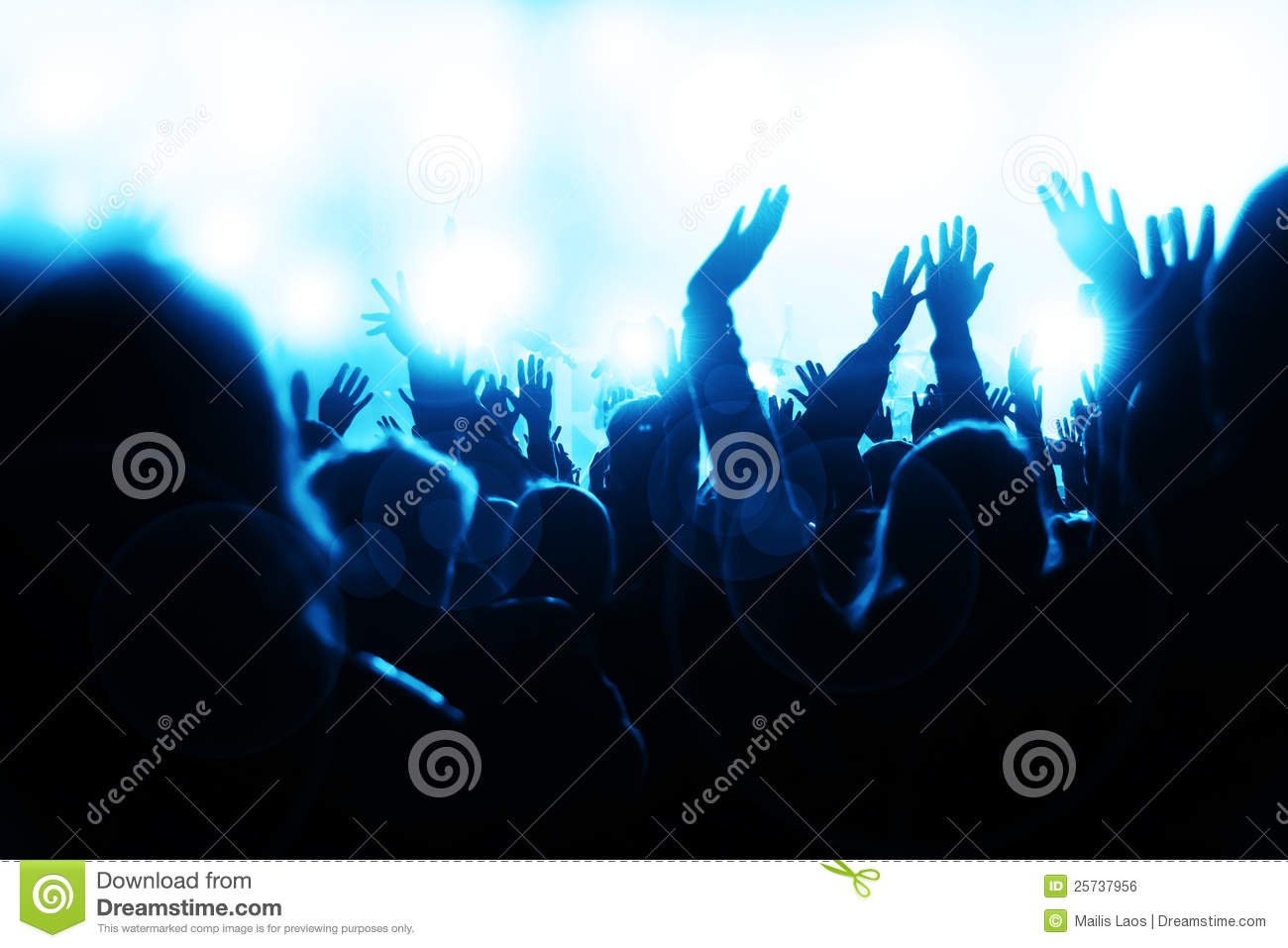 Crowd Cheering at the Concert