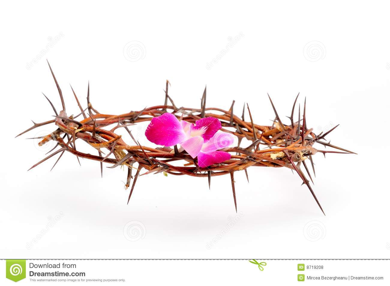Crown Made Of Thorns And Flower Royalty Free Stock Photos - Image ...