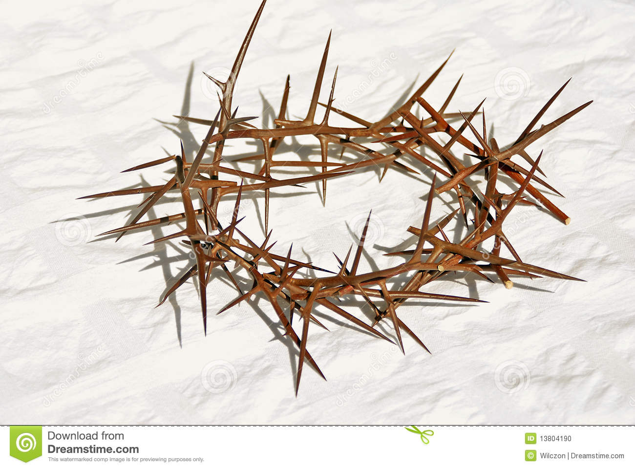 Crown Of Thorns Stock Photo - Image: 13804190