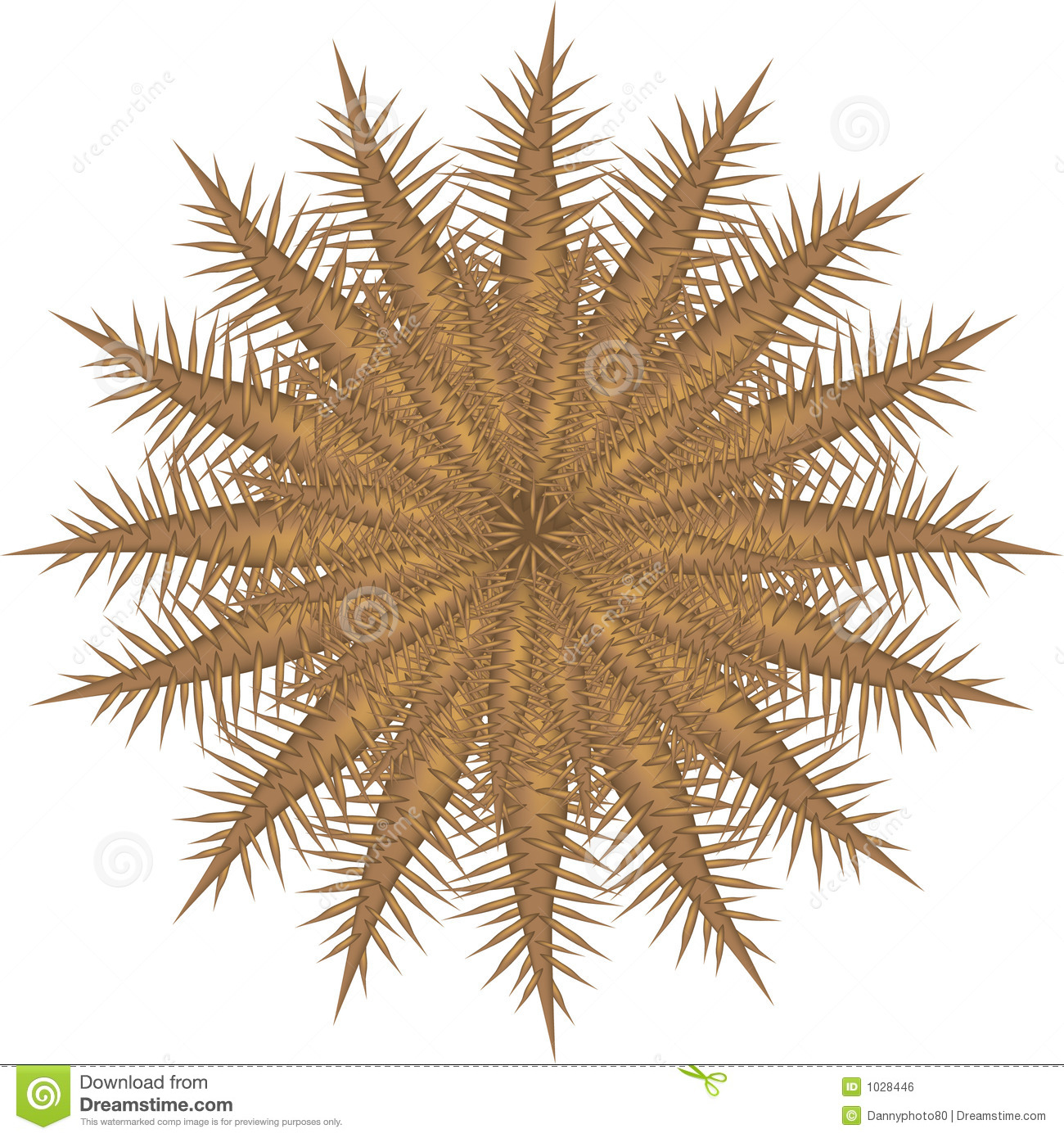 Crown Of Thorns Starfish Royalty Free Stock Image - Image: 1028446