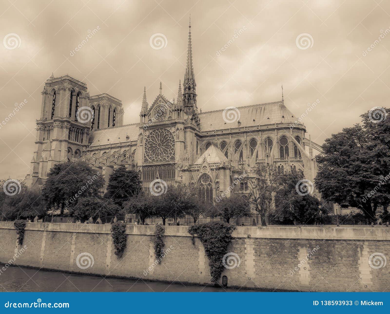Cru de cathédrale de Notre Dame de Paris