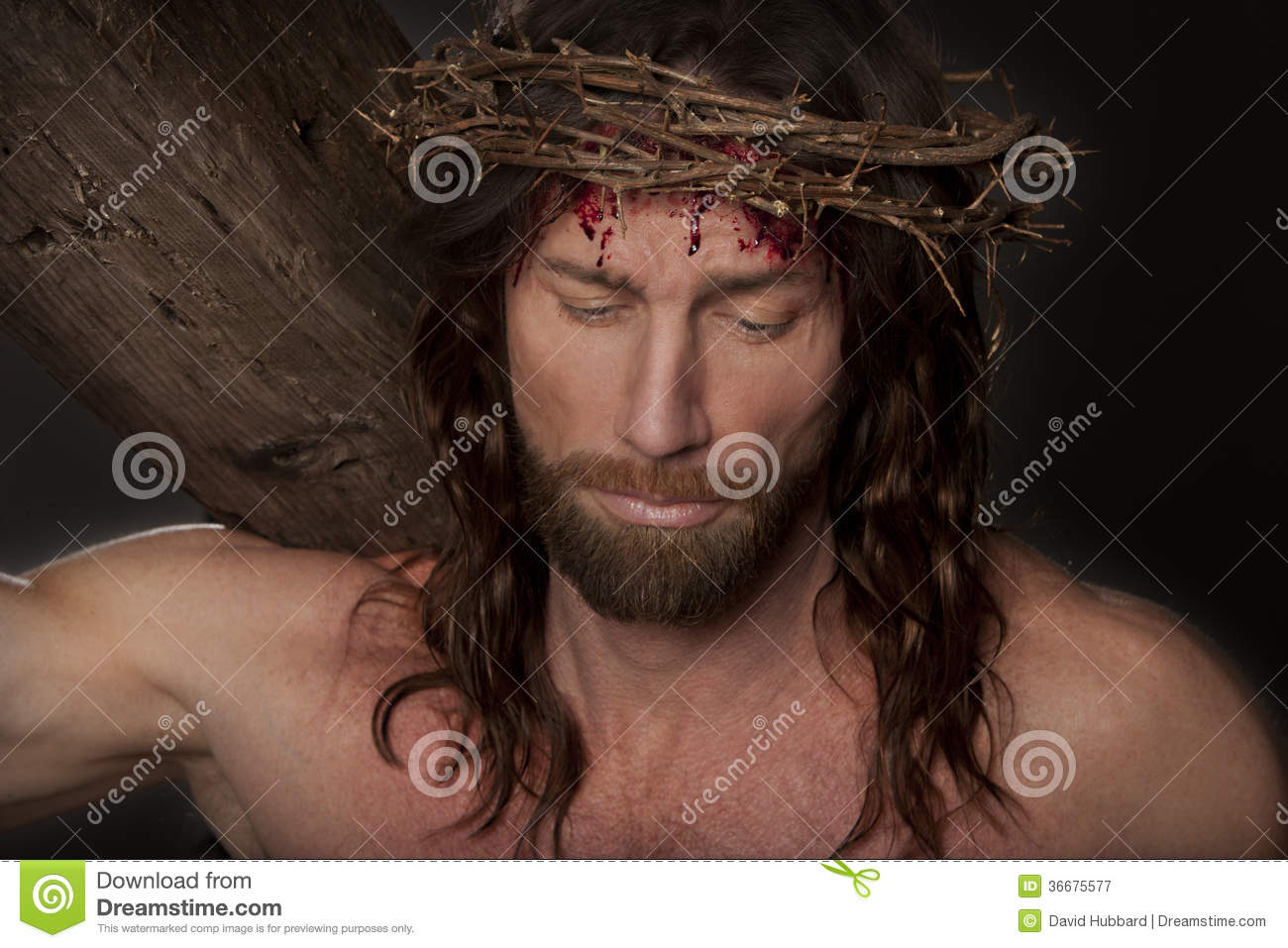 Jesus Christ Crucifixion portrait image wearing an authentic crown of ...
