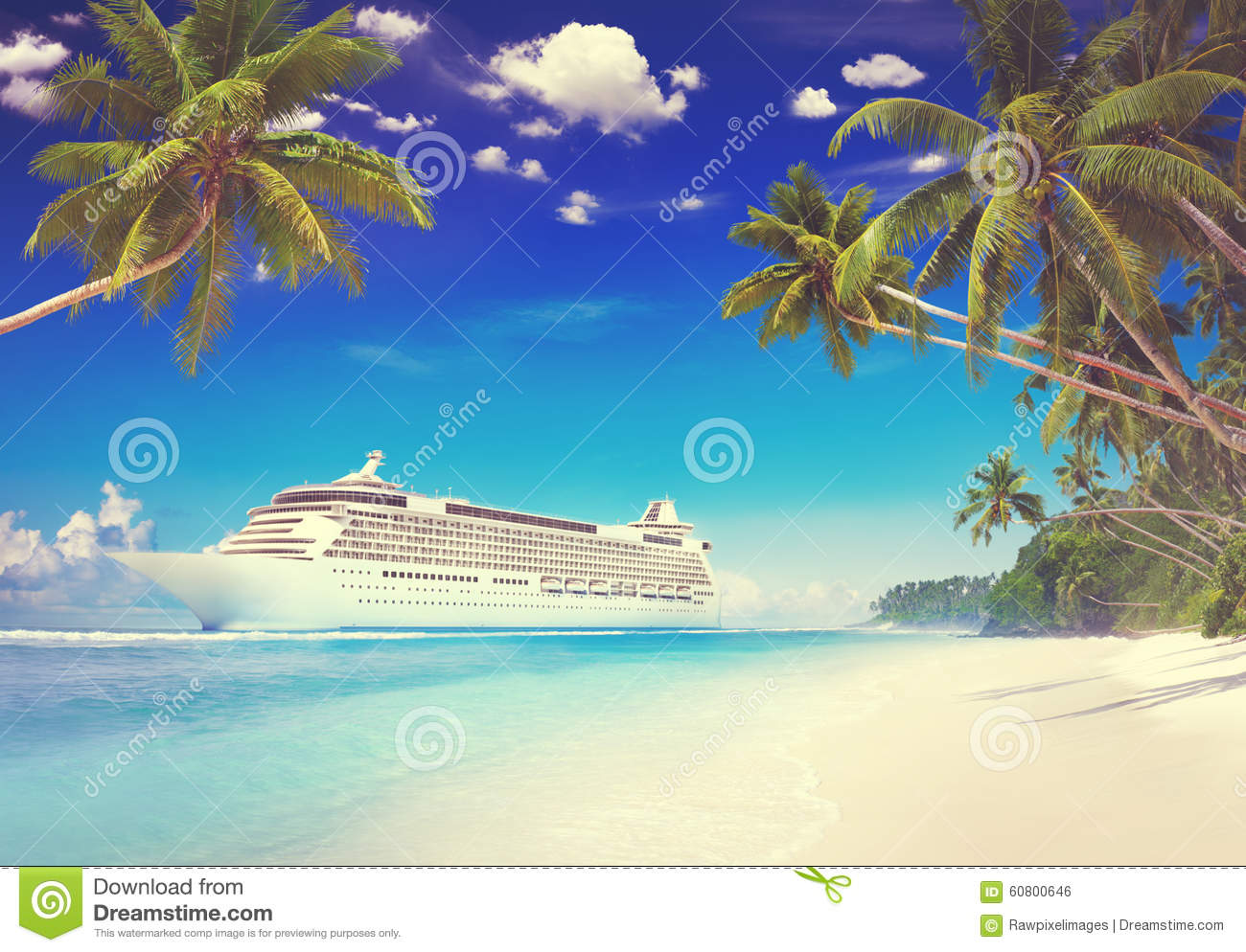 Cruise Beach Palm Tree Vacation Travel Holiday Concept Stock Photo  Image 6