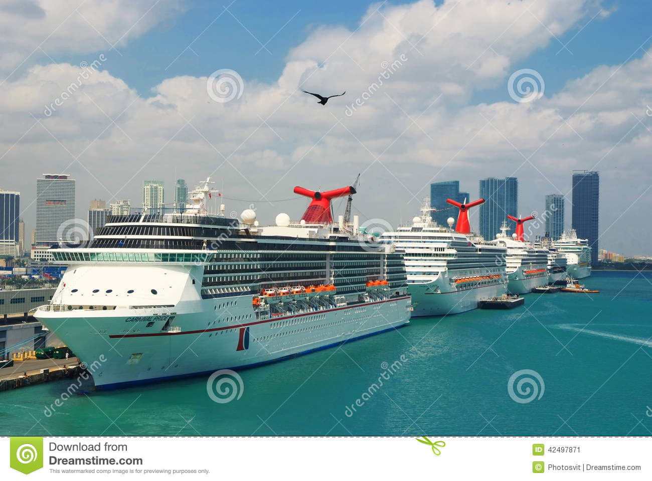Cruise Ships At Port Of Miami Editorial Photo Image Of Closeup - Cruise ship port in miami