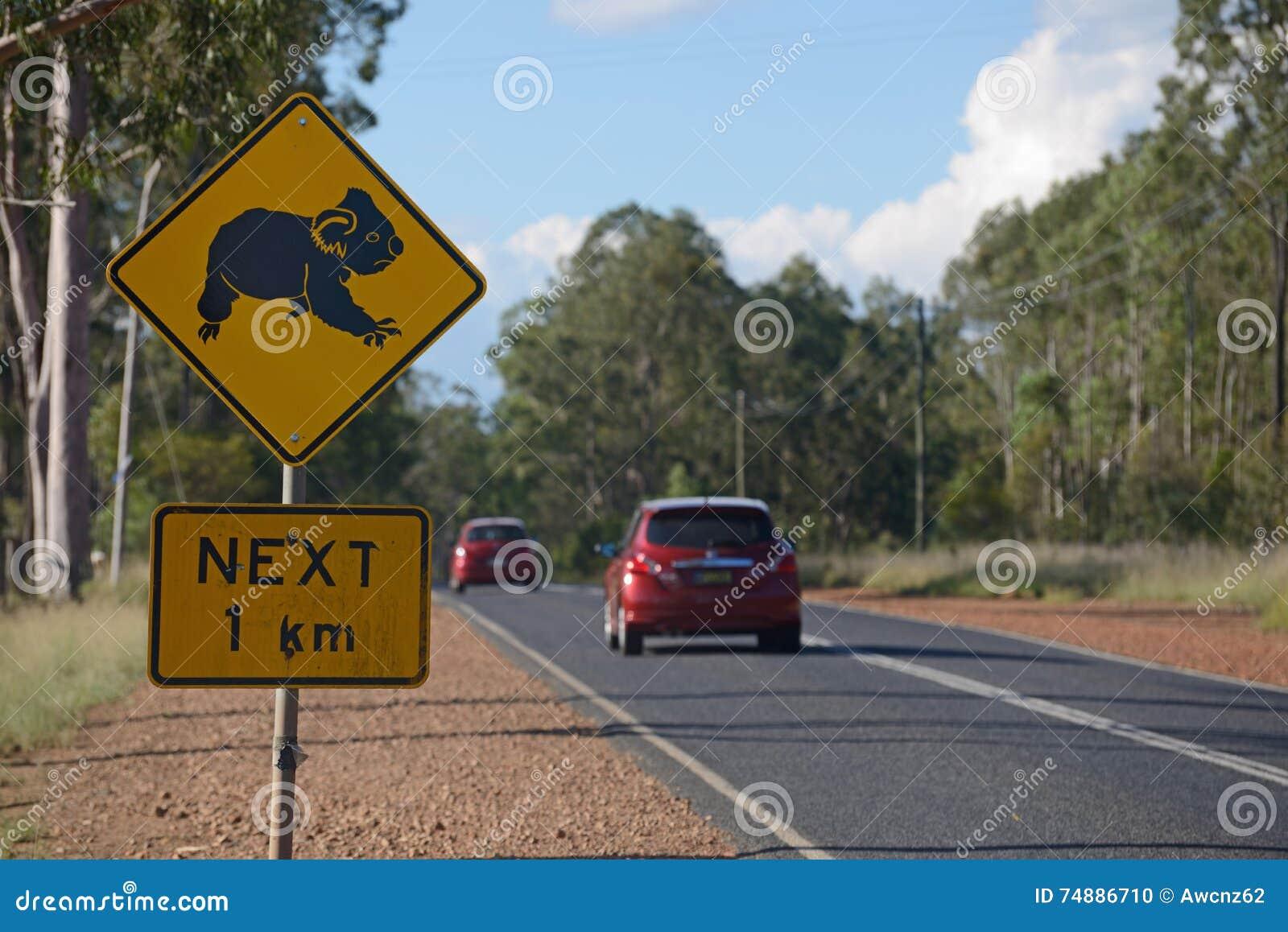 Cruz das coalas aqui