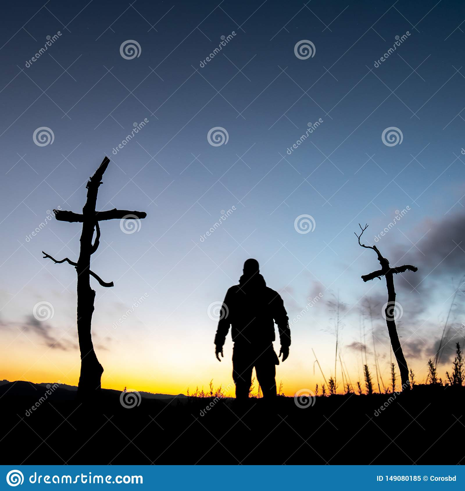 Cruzes na floresta