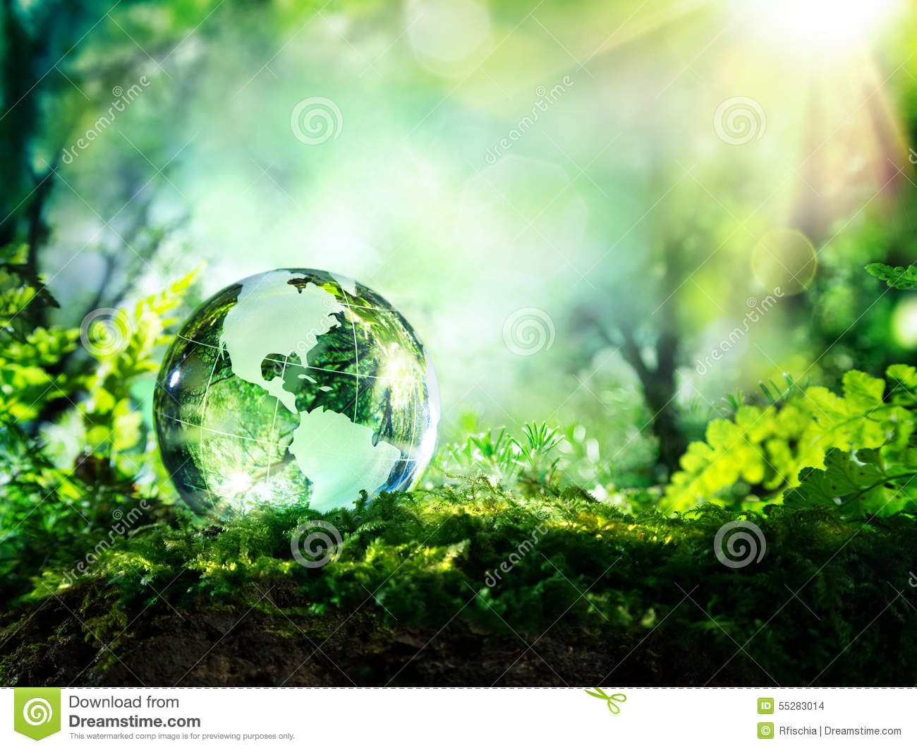 Download Crystal Globe On Moss In A Forest Stock Photo - Image of trees, environmental: 55283014