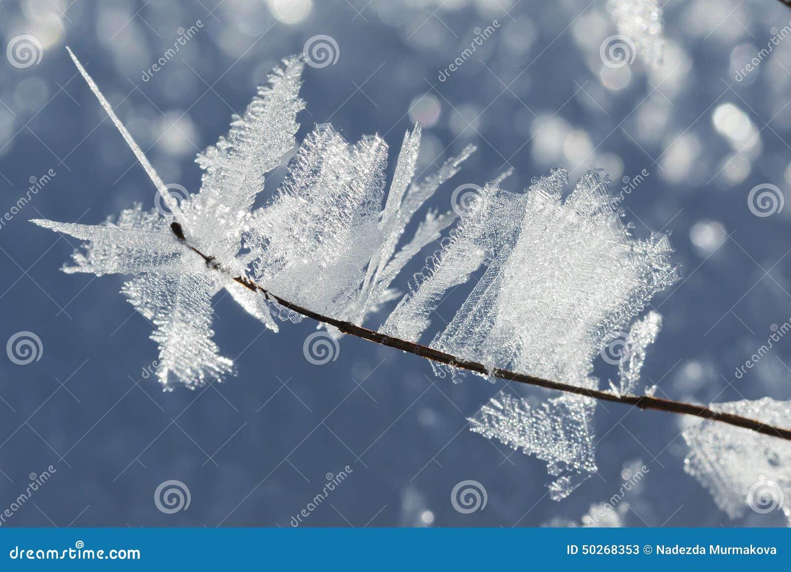 Crystal Icing macro en ramas