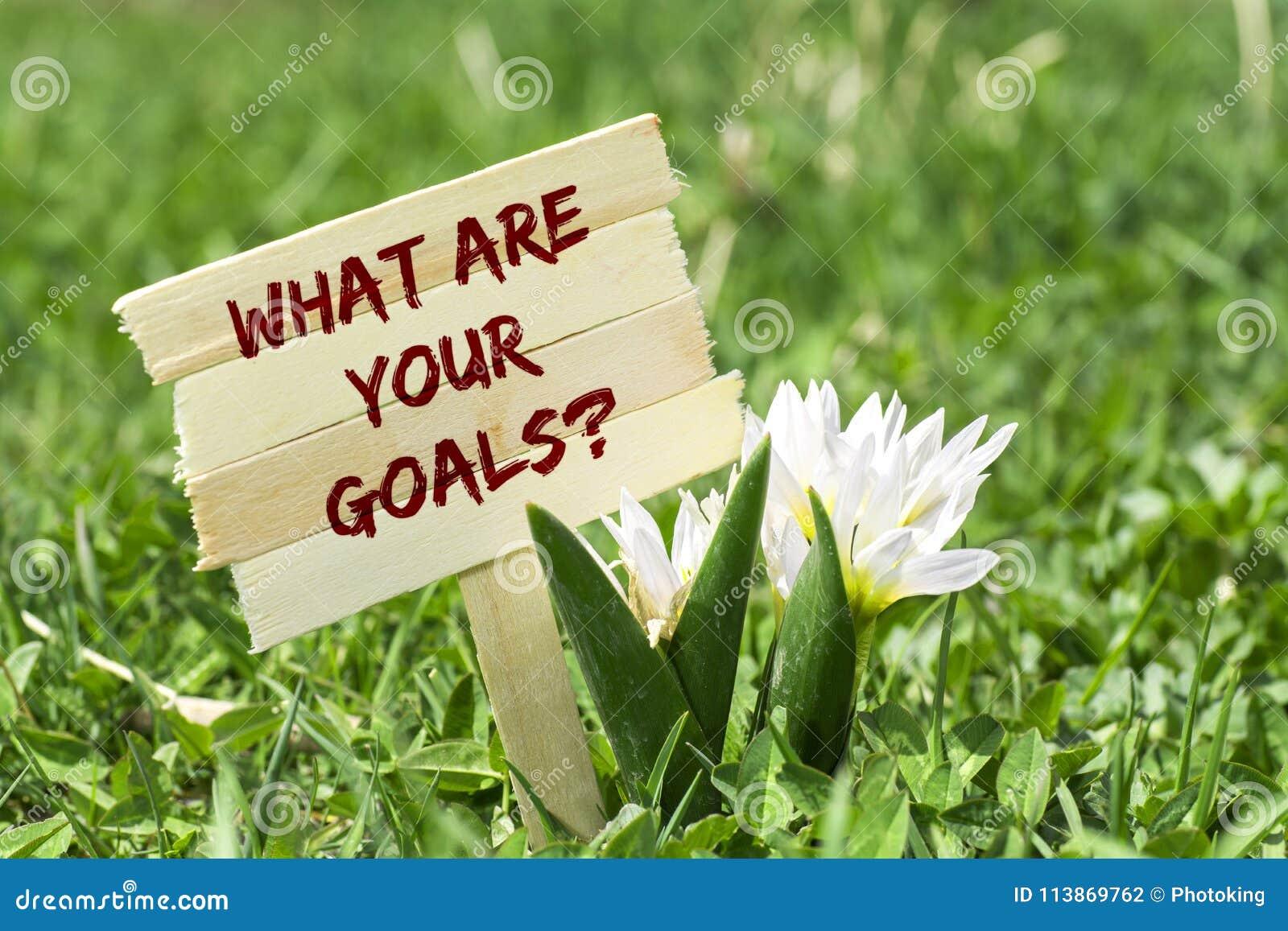 Cuáles son sus metas