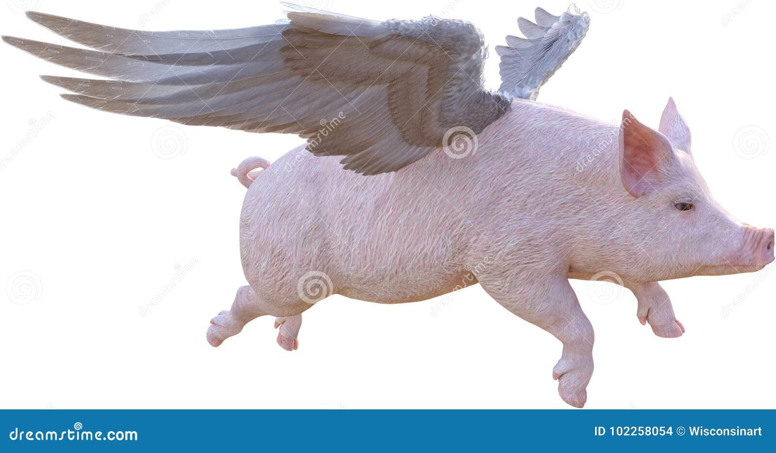 Cuando los cerdos vuelan, el volar, aislado