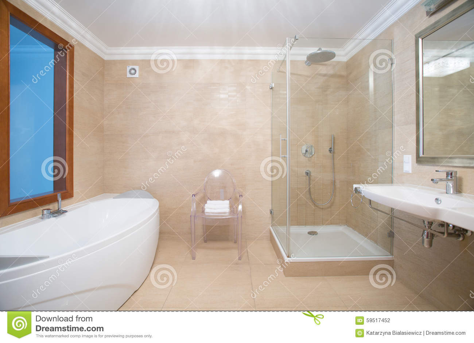 Cuarto De Baño Con La Ducha Y La Bañera Foto de archivo - Imagen de ...