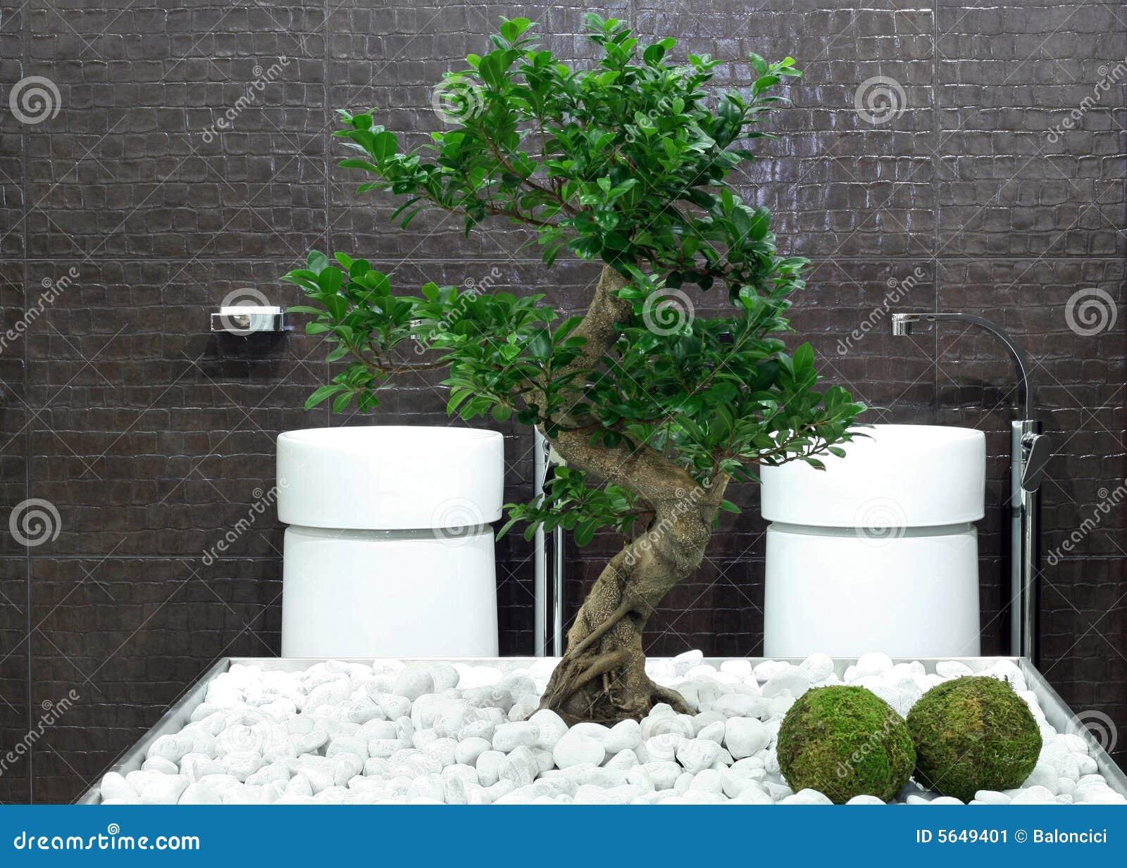 Baño Japones Moderno:Cuarto de baño del estilo japonés con el árbol y las piedras de los