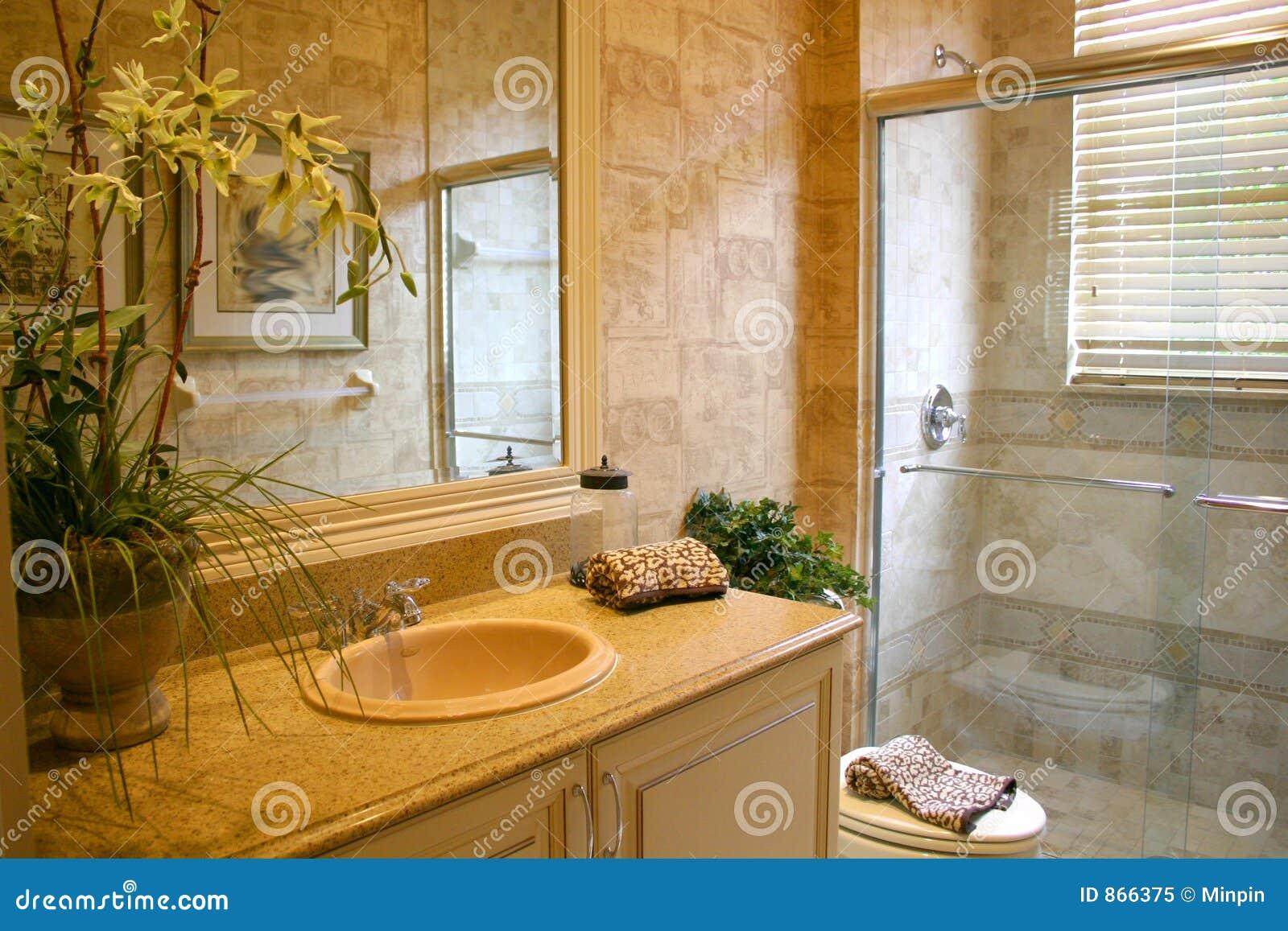 Cuarto de baño de lujo imagen de archivo. Imagen de ...