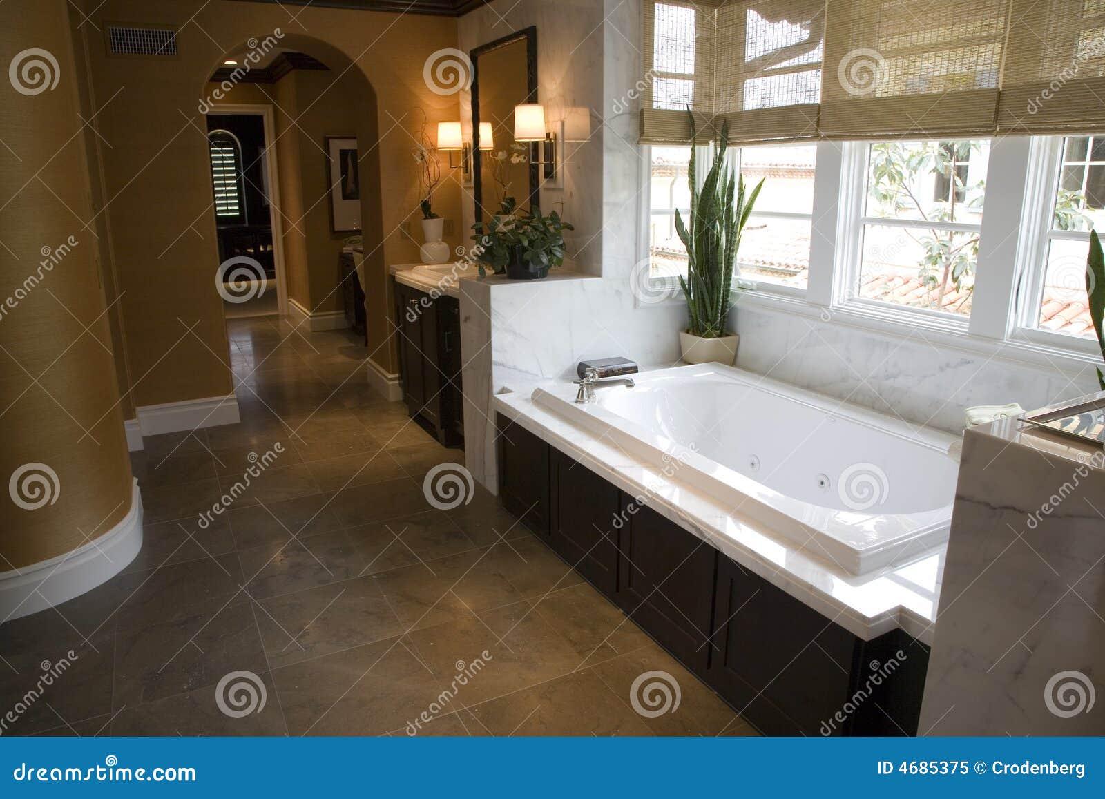 Baños Con Tina Fotos: de baño del diseñador con un suelo moderno de la tina y de azulejo