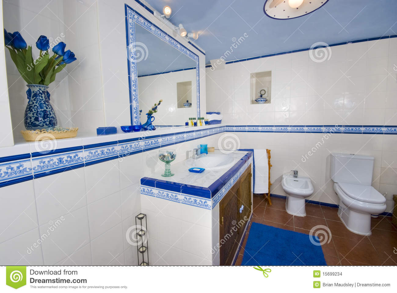 Baños Rusticos Azules:Rustic White and Blue Bathroom