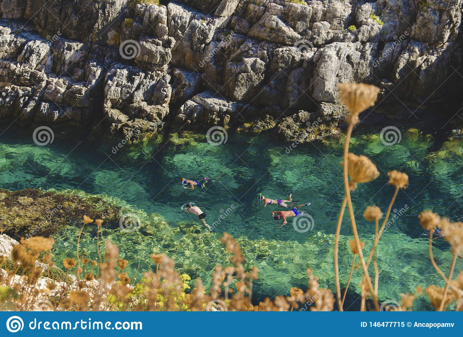 Cuatro personas que nadan, buceando, jugando y explorando los tesoros subacuáticos en el agua cristalina de la turquesa de