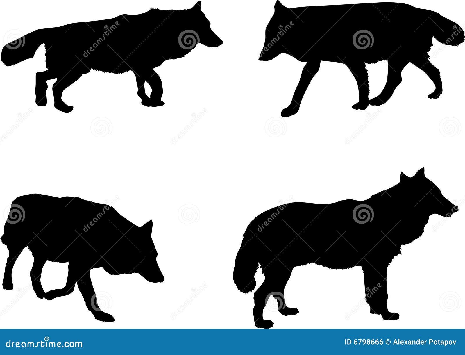 Silueta Lobo: Cuatro Siluetas Del Lobo Imagen De Archivo Libre De