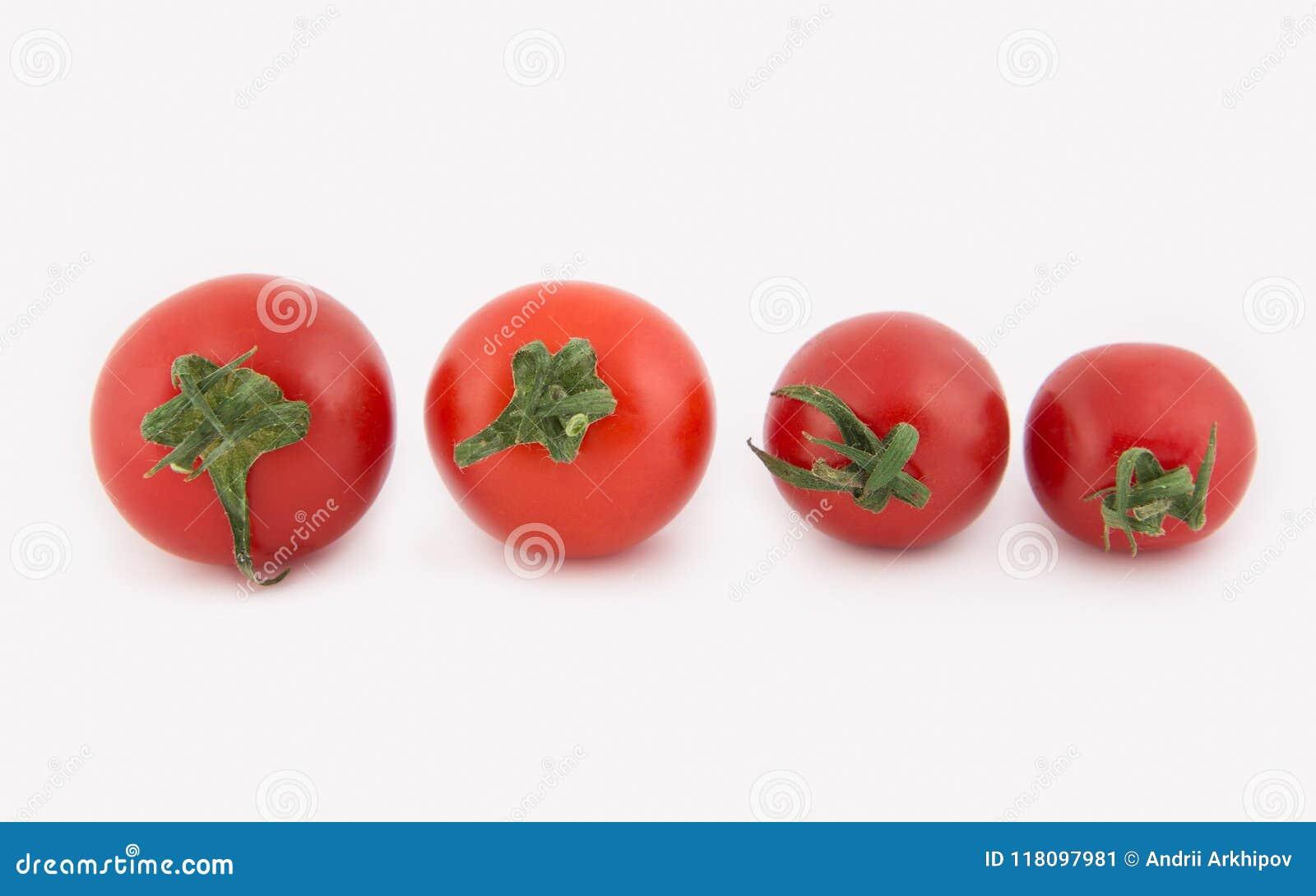 Cuatro tomates de cereza frescos mienten en fila del más grande al más pequeño Tomates aislados en el fondo blanco