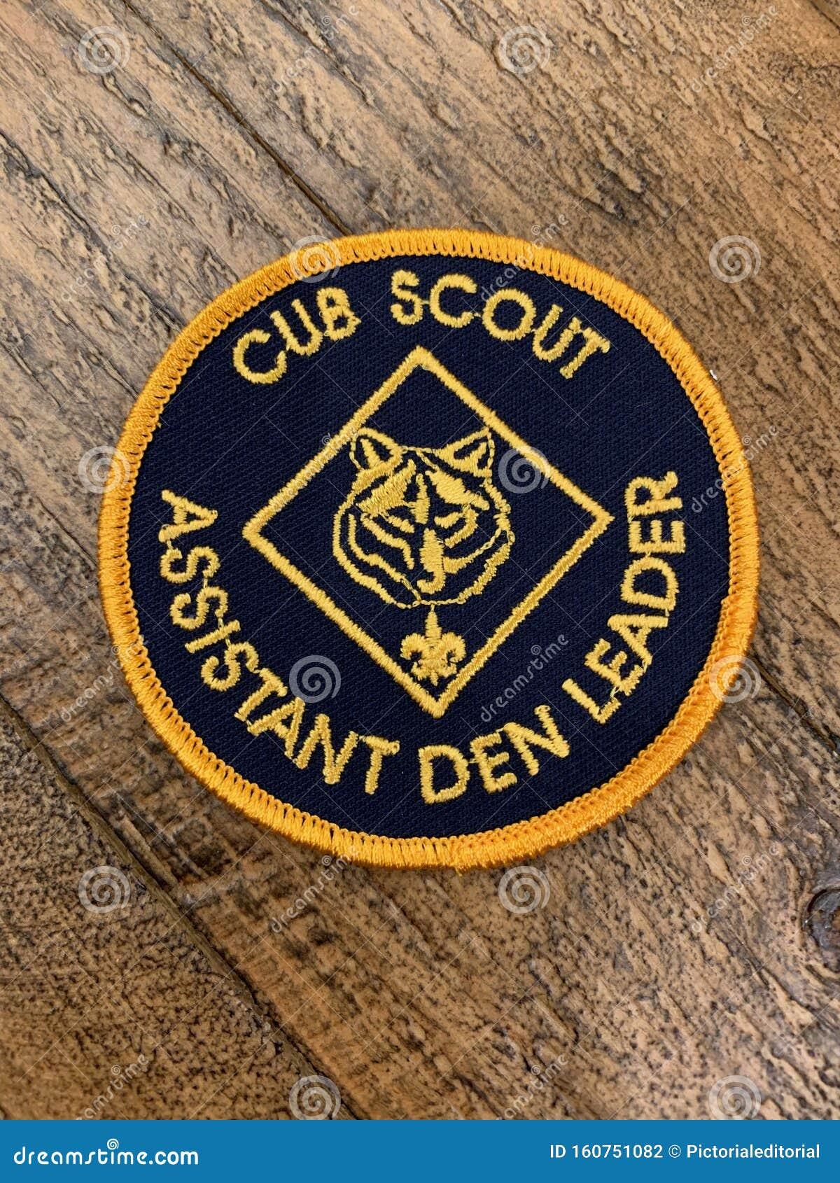 Boy Cub Scout Assistant Den Leader Patch